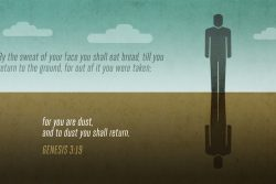Genesis 3:19