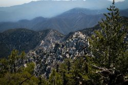 Gentle & Temperate Wilderness